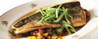 AGA_seabass_food